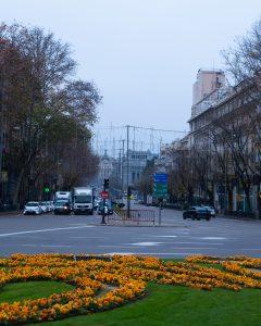 alcala desde puerta 1906 1 240x300 - Fotos Antiguas de Madrid
