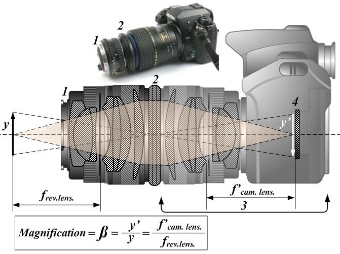 Objetivo invertido para Macrofotografia - Macrofotografía